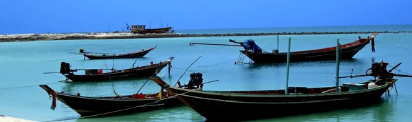 Local fishing Boats at home in a tranquil bay