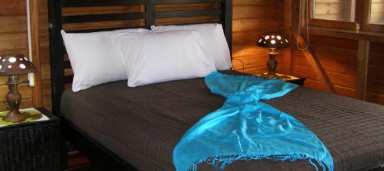 Your comfortable room at Hotel Luna del Rio