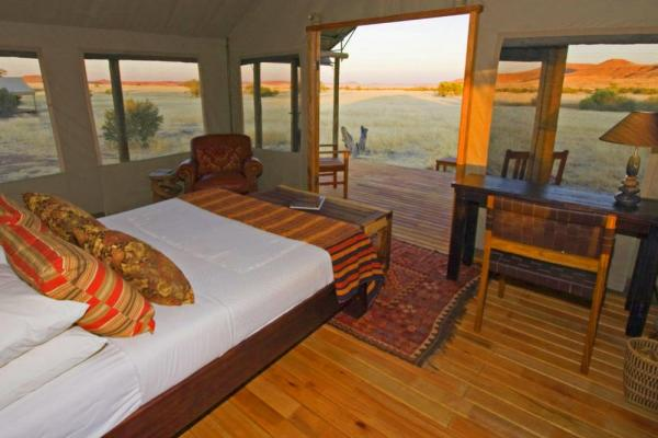 Desert Rhino Camp's comfortable and unique rooms.