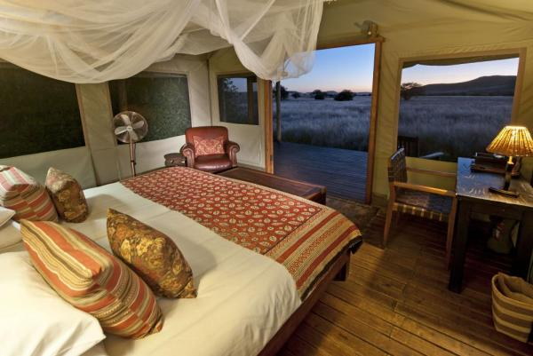 Stay in the spacious and unique rooms at the Desert Rhino Camp