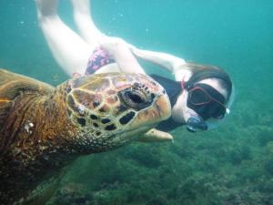 Swimming side by side with an amazing sea turtle.