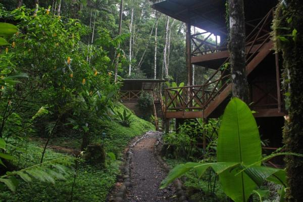 Rios Tropicales Lodge