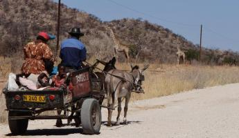 Locals using a typical form of transportation