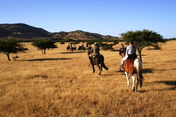 Enjoy a countryside horseback ride
