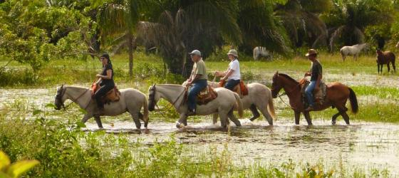 Enjoy the grounds of Araras EcoLodge on horseback