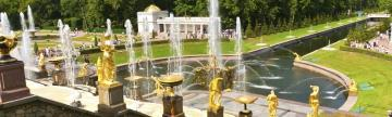 View the magnificent gardens at the Peterhof Palance in St. Petersburg