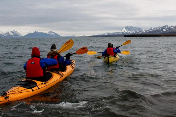 Take advantage of your ship's kayaking excursion
