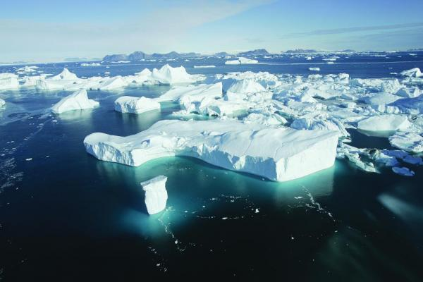 Your Arctic voyage brings you into a world of icebergs