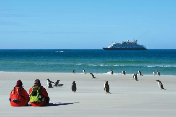 Your Sea Spirit adventure will bring you into close contact with Polar wildlife