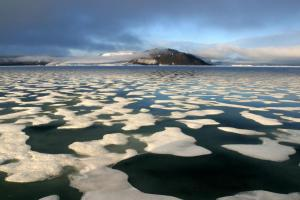 Explore the mysterious and beautiful Arctic seas on your voyage
