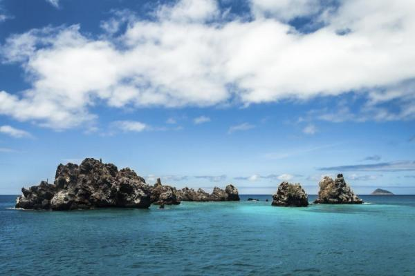 Warm waters of the Galapagos archipelago