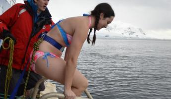 Polar Plunge: This does not look fun...