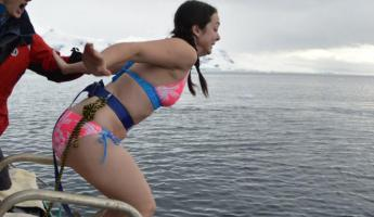 Polar Plunge: And here....