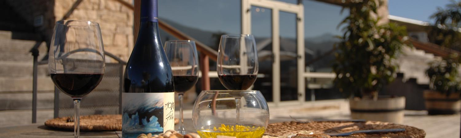 Taste the wonderful wines of the region on a Chile tour