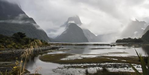 Explore New Zealand's stunning Milford Sound