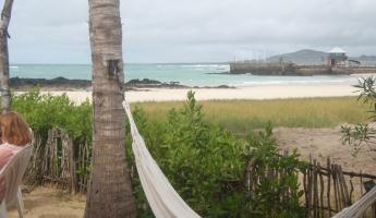our view from our hotel on Isabela