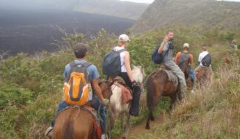 Horseback riding on Sierra Negra