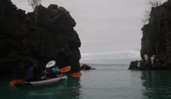 kayaking around Santa Cruz