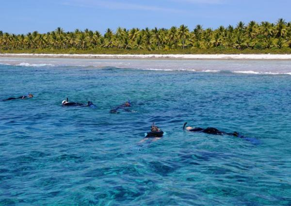Snorkeling the clear waters of the South Pacific