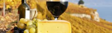 Delicious cheeses and wines enjoyed at a vineyard