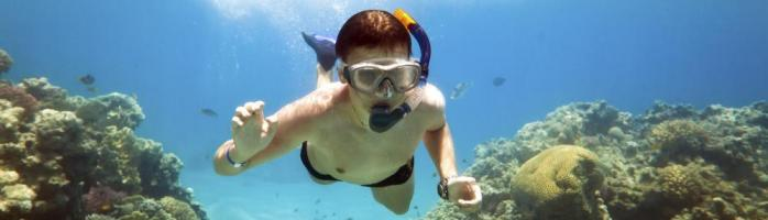 Snorkeling among the coral reef system