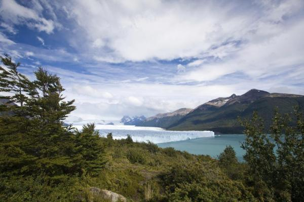 View of Perito Moreno Glacier