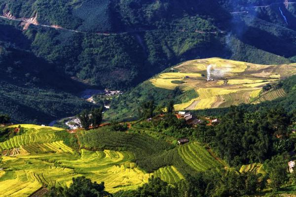 Rice field terraces of Myanmar