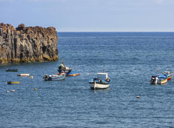 Fishing boats in Madeira Harbor