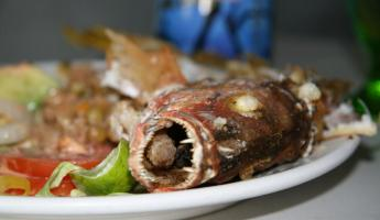 Fresh snapper lunch on Espiritu Santo