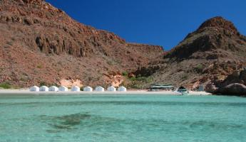 Our camp on Espiritu Santo Island