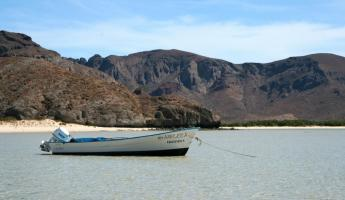 Balandra Bay in La Paz