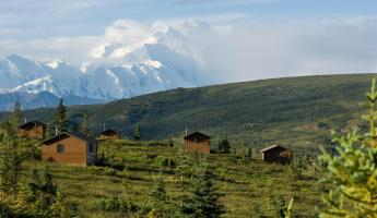 Photo Courtesy of Camp Denali