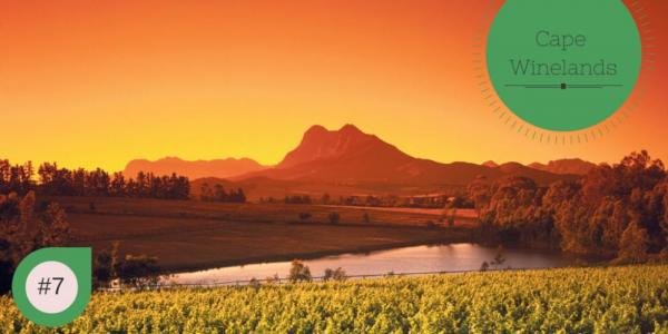 Cape Winelands of South Africa