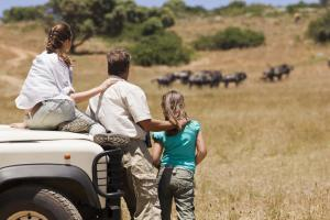 Family viewing wildlife on an African safari