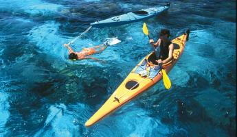 Kayak and snorkel in clear blue waters