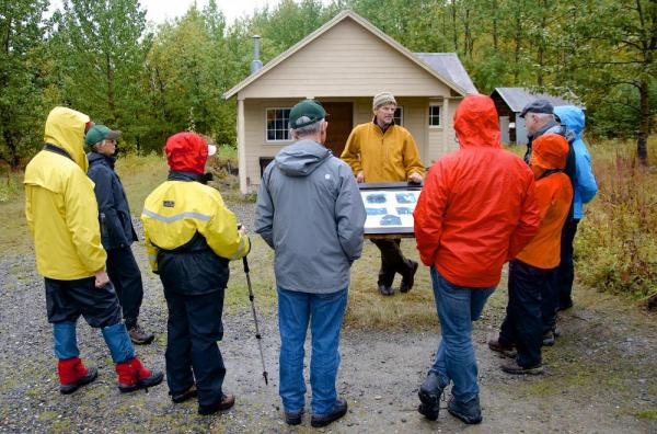Guided naturalist walks in Denali