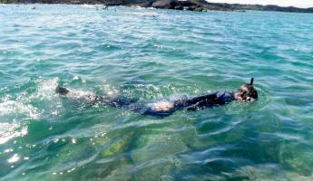 Snorkeling in the Galapagos