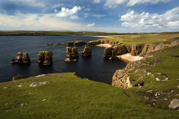 The dramatic coastline of the Shetland Islands