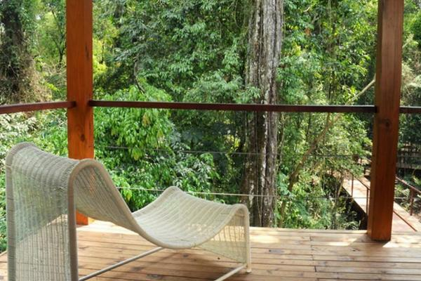Balcony overlooking jungle