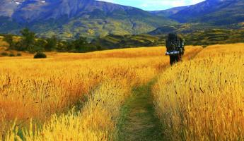Hiking through colorful fields in Patagonia