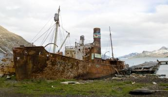 Old whaling boat in Grytviken
