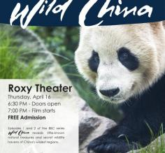 Wild China Event Poster