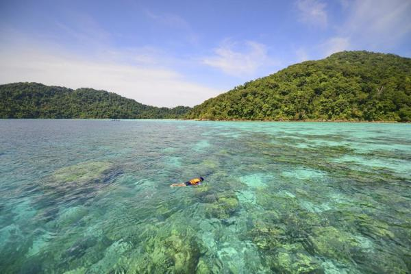 Snorkeling in the Andaman Sea