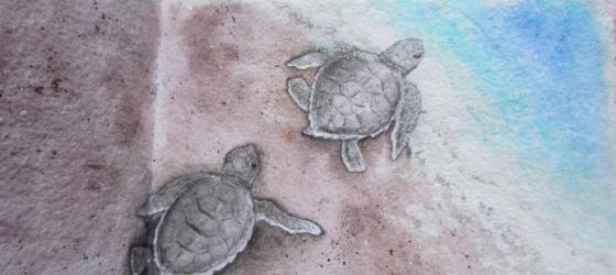 acrylics, sea turtle babies, detail