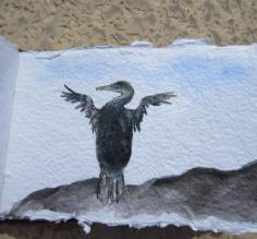 acrylics, flightless cormorant, single page