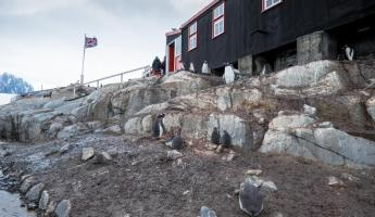 THe Only Post Office in Antarctica: Port Lockroy