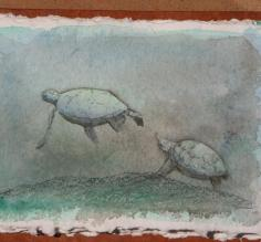 Sea turtles, acrylics and colored pencil