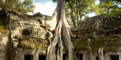 Ta Prohm in Angkor Wat