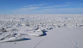 A view of the ice