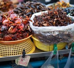 Fresh seafood at a Cambodian market